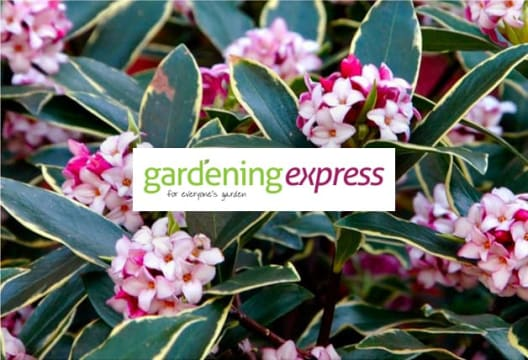 Stock Up at Gardening Express and Get £10 Off when you Spend £75 or More