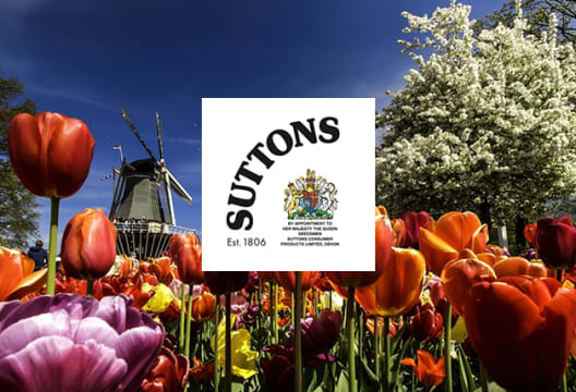 Up to 40% Off in the Gardening Sale at Suttons Seeds