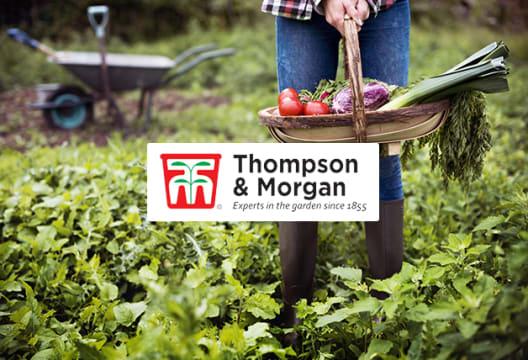 10% Saving When You Shop Seeds, Plants & Bulbs at Thompson & Morgan